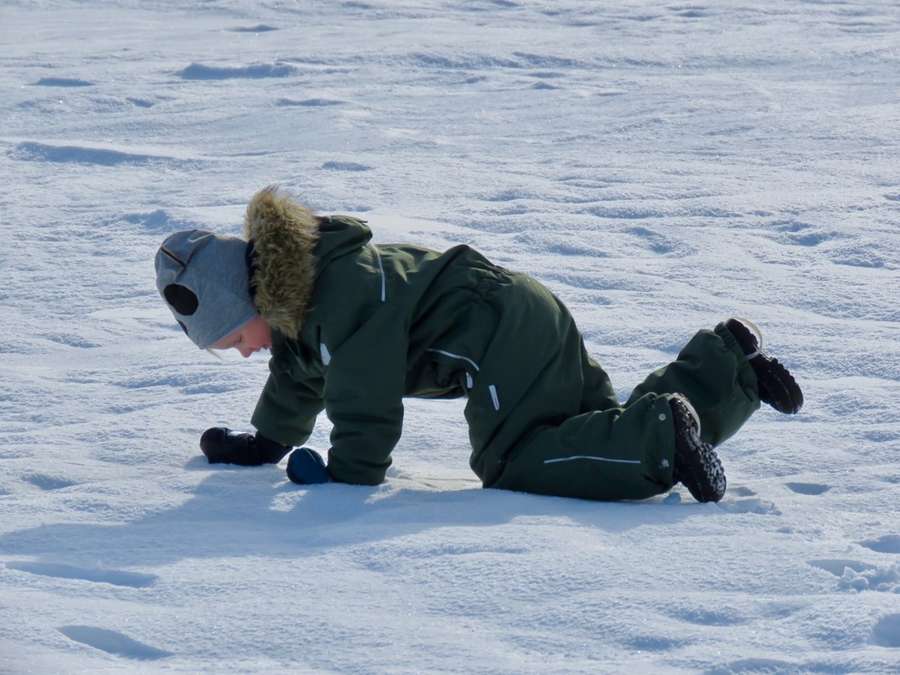 The child is examining the snow covered ice of the sea at Marjaniemi in February. Just fantastic!