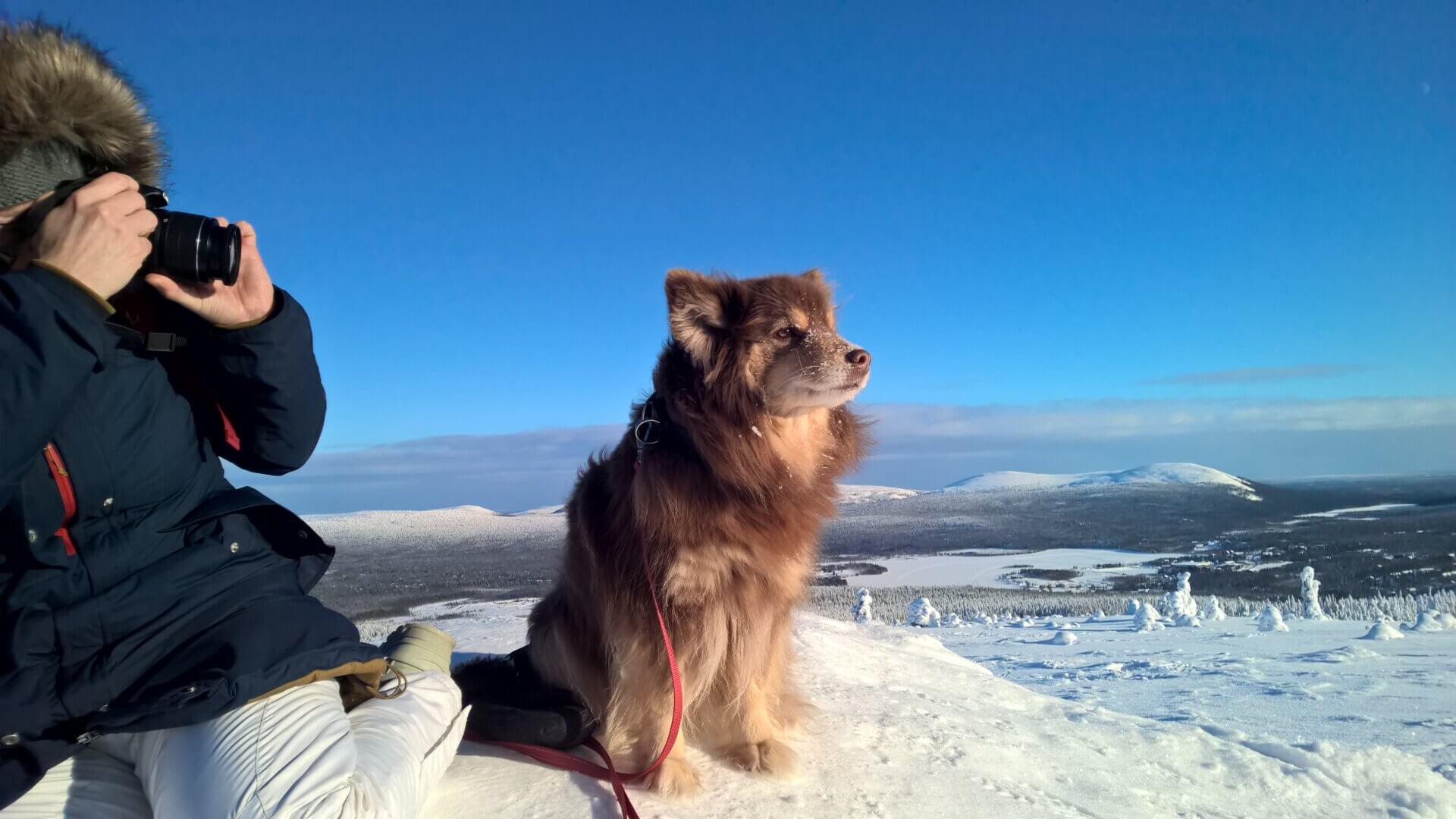 Experiencing Kuertunturi Fell in Lapland